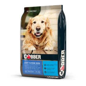 Cobber Lazy Aussie Dog