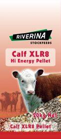 Calf XLR8
