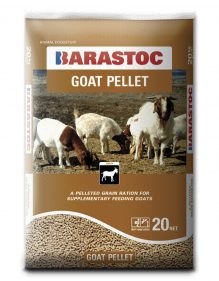 Barastoc Goat