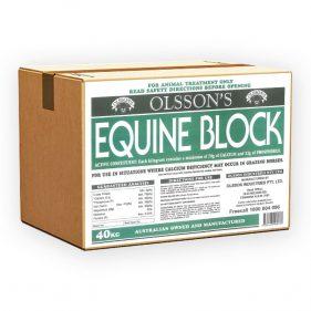 Equine Block