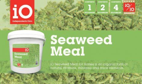 iO Seaweed Meal