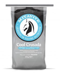 Mitavite Cool Crusada